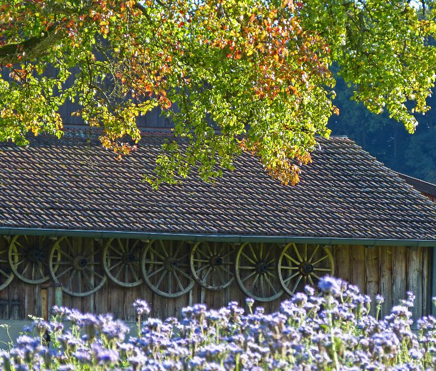 Gruß aus der Schweiz – Greetings FromSwitzerland