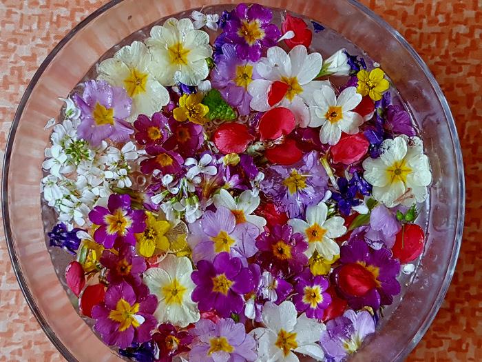 Blumensonntag – FlowerSunday