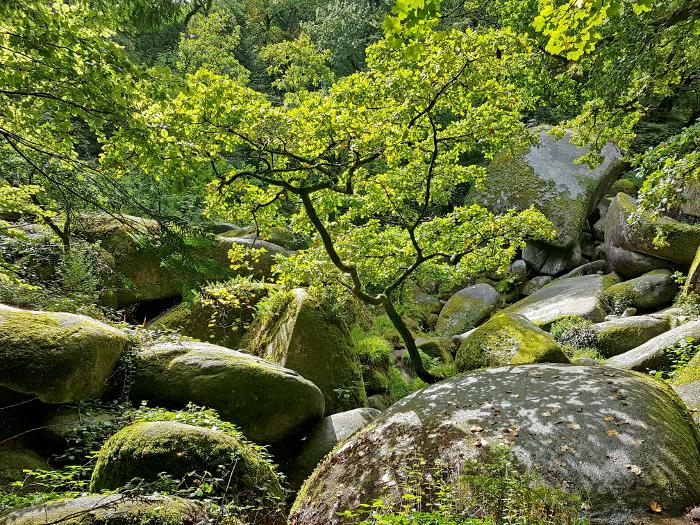 Noch ein mystischer Ort: Huelgoat – Another mystical site:Huelgoat