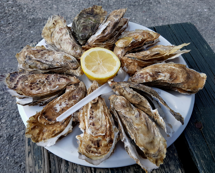 Austern in Cancale – Oysters in Cancale