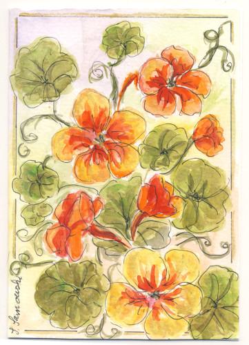 Blütenkarten6