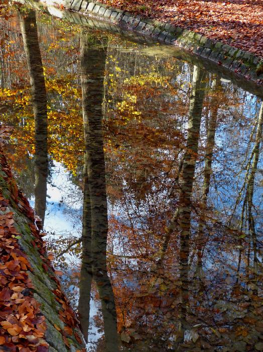 autumn51