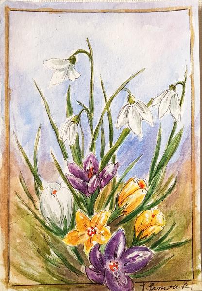 Frühlingsblumen – SpringFlowers
