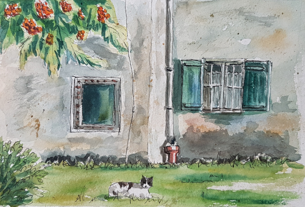 Alter Bauernhof – OldFarmhouse