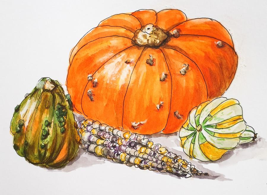 Kürbis und Co. – Pumpkin andCo.