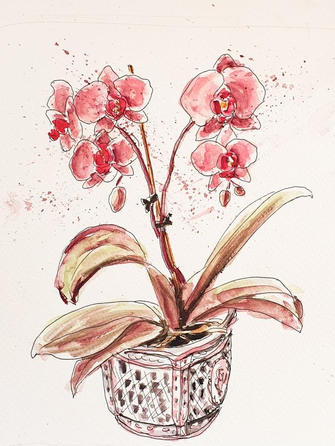 Blumen vor dem Frühstück –  Flowers BeforeBreakfast