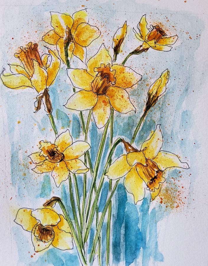 Osterglocken – Daffodils