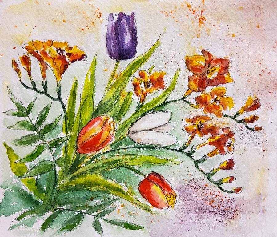 Tulpen und Freesien – Tulips andFreesias