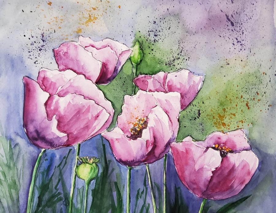 Rosa Mohn – PinkPoppies