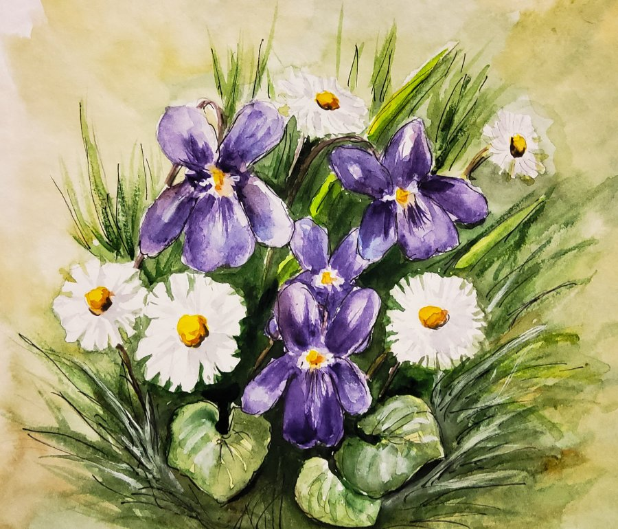 Veilchen und Gänseblümchen – Violets andDaisies